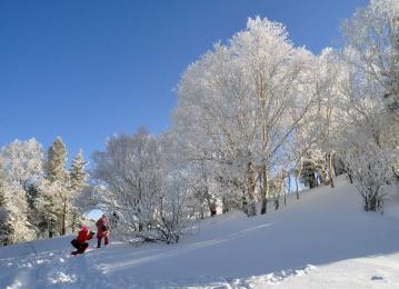 冬天的呼唤—长白山踏雪寻欢双飞4ballbet贝博网页登录(直飞)