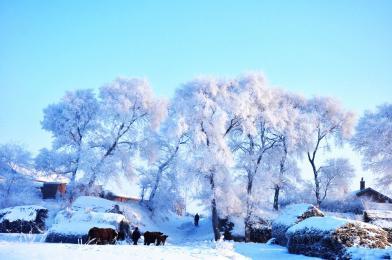 哈尔滨、亚布力、雪乡、长白山、雾凇岛双飞八ballbet贝博网页登录