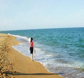 大连、紫云花汐、金石滩、发现王国、老虎滩海洋公园双卧6ballbet贝博网页登录(全陪团)